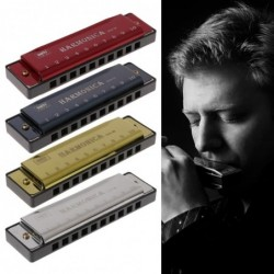 Harmonica - 10 holes - key C - musical instrument - with case