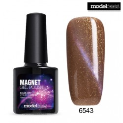 Magnet UV Gel Nail Polish 10ml