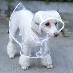 Impermeabile trasparente per cani