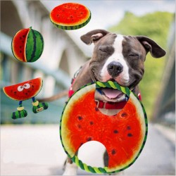 Frisbee giocattolo in corda per cani anguria 19 cm