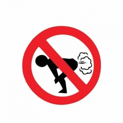 No Farting - car sticker - 12 * 12cm