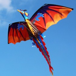 3D dragon kite with tail & line 100m