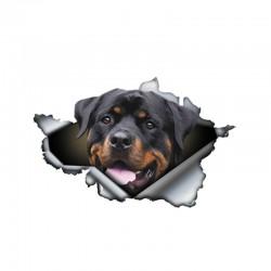 Rottweiler 3D - adesivo per auto in vinile - 13 * 8,4 cm