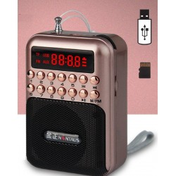 Portable - rechargeable mini radio - support TF card - USB - MP3 player